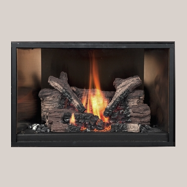 34 dvl gsr2 gas insert the fireplace place - Firebacks for fireplaces ...
