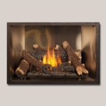 TRV Clean Face GSR2 Gas Fireplace