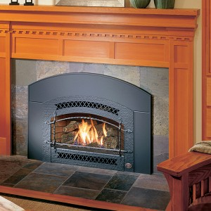 32 dvs gas insert fireplace