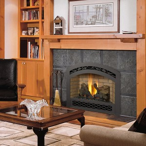 564 Space Saver GS2 Gas Fireplace