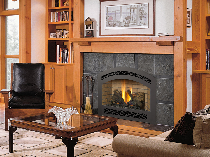 564 Space Saver Gs2 Gas Fireplace The Fireplace Place