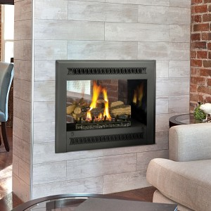 864 See-Thru GS2 Gas Fireplace